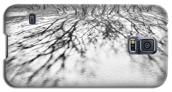 Galaxy S5 Case featuring the photograph Winter Shadows by The Forests Edge Photography - Diane Sandoval
