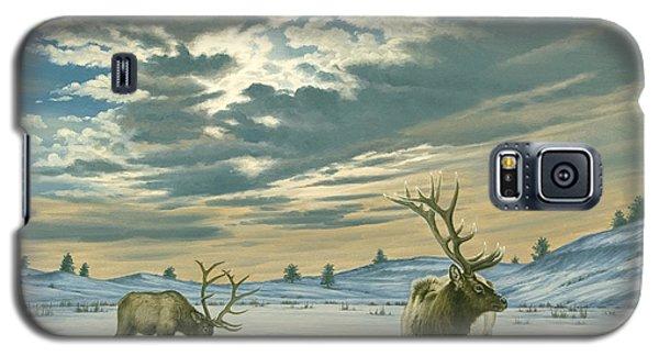 Bull Galaxy S5 Case - Winter Sky-elk   by Paul Krapf
