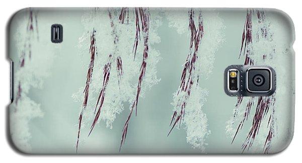 Winter Softness Galaxy S5 Case
