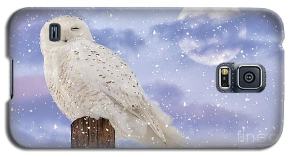 Winter Solstice Galaxy S5 Case by Heather King