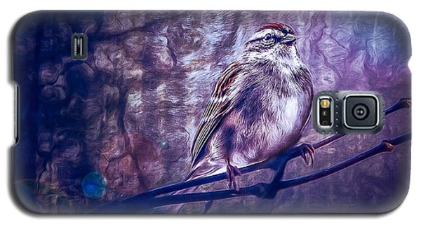 Winter Sparrow Galaxy S5 Case
