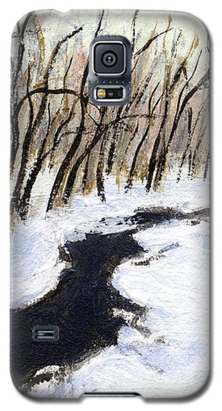 Winter Stream Galaxy S5 Case