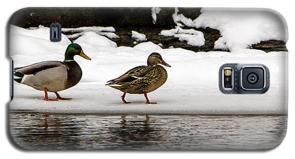 Winter Stroll Galaxy S5 Case