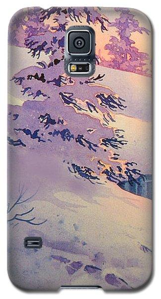 Winter Sun Galaxy S5 Case by Teresa Ascone