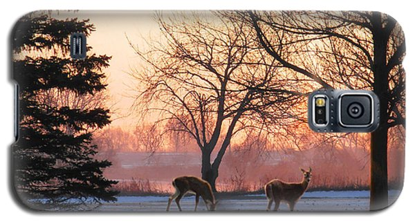 Winter Sunrise Greeting Galaxy S5 Case by Doug Kreuger