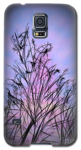 Winter Sunrise Galaxy S5 Case