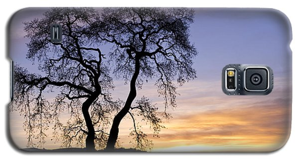 Galaxy S5 Case featuring the photograph Winter Sunrise With Tree Silhouette by Priya Ghose