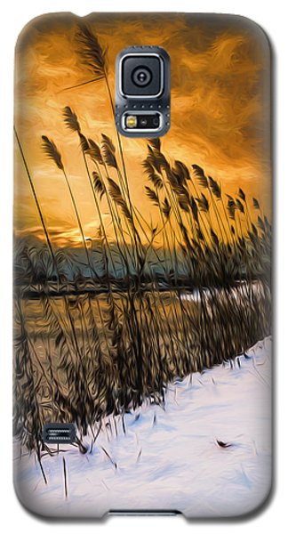 Winter Sunrise Through The Reeds - Artistic Galaxy S5 Case