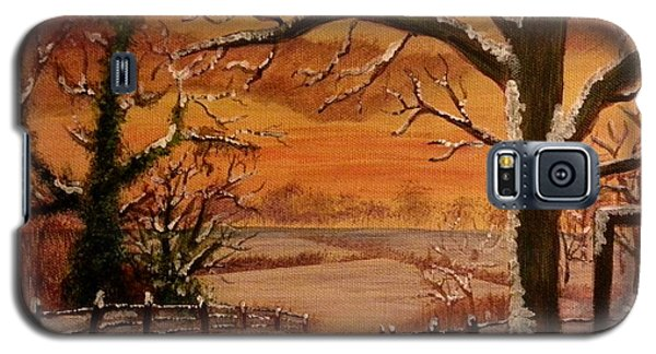 Winter Sunset  Lll Galaxy S5 Case by Elizabeth Coats
