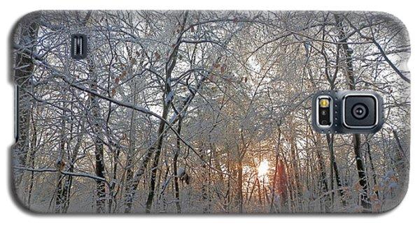 Winter Sunset Galaxy S5 Case by Pema Hou