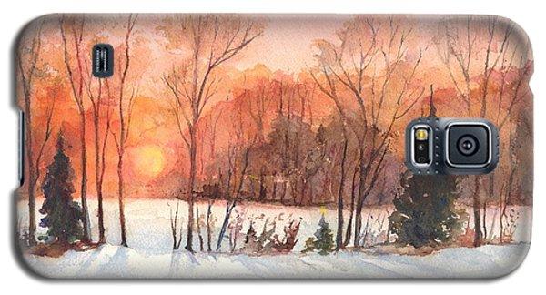A Hedgerow Sunset Galaxy S5 Case by Carol Wisniewski