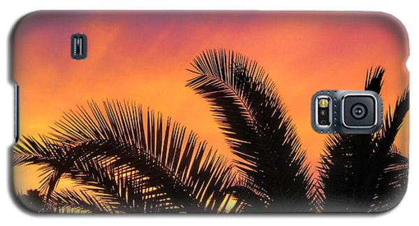 Winter Sunset Galaxy S5 Case by Tammy Espino