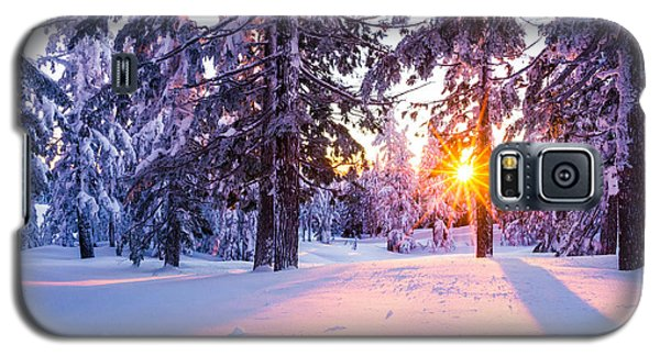 Winter Sunset Through Trees Galaxy S5 Case