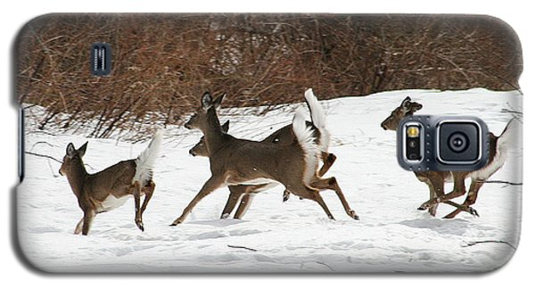 White Tailed Deer Winter Travel Galaxy S5 Case