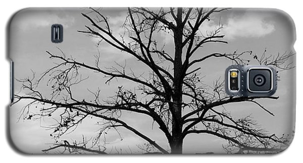 Galaxy S5 Case featuring the photograph Winter Tree by Andrea Anderegg