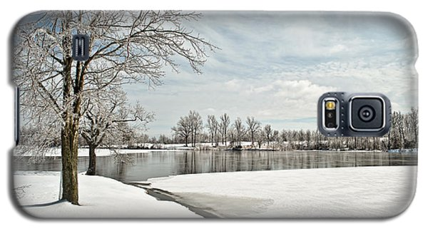 Winter Tree At The Park 2 Galaxy S5 Case by Greg Jackson