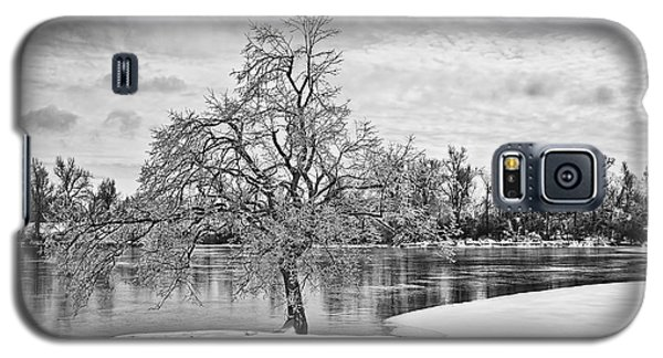 Winter Tree At The Park  B/w Galaxy S5 Case by Greg Jackson