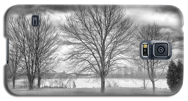 Winter Trees Galaxy S5 Case by Howard Salmon