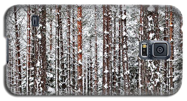 Galaxy S5 Case featuring the photograph Winter Trunks by Kennerth and Birgitta Kullman