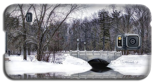 Galaxy S5 Case featuring the photograph Winter Walk by Skip Tribby