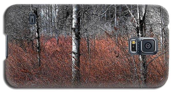Winter Wetland I Galaxy S5 Case