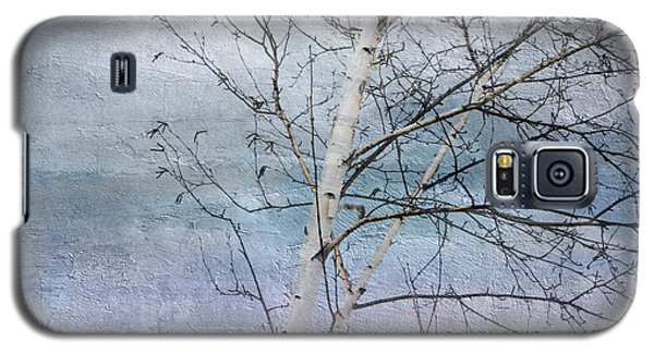 Winter White Birch  Galaxy S5 Case