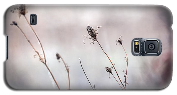 Galaxy S5 Case featuring the photograph Winter Wild Flowers by Sennie Pierson
