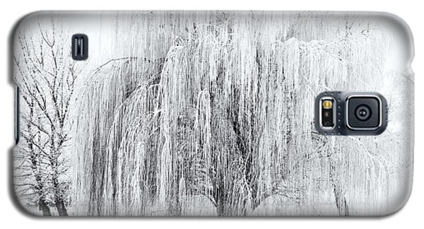 Ice Galaxy S5 Case - Winter Willow by Mike  Dawson