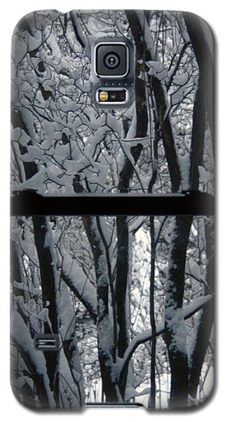 Winter Window Galaxy S5 Case