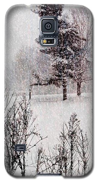 Winter Wonder 2 Galaxy S5 Case