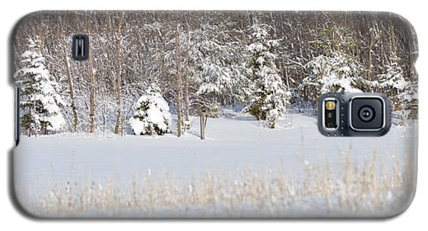 Galaxy S5 Case featuring the photograph Winter Wonderland by Dacia Doroff