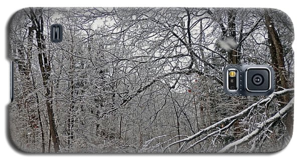 Winter Wonderland Galaxy S5 Case by Pema Hou