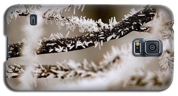 Winter Wonders Galaxy S5 Case by Tiffany Erdman