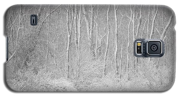 Galaxy S5 Case featuring the photograph Winter Wood 2013 by Joan Davis