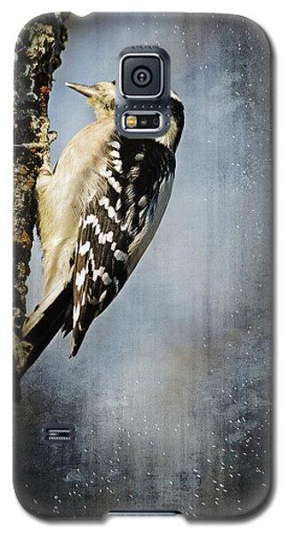 Winter Woodpecker Galaxy S5 Case by Lena Wilhite