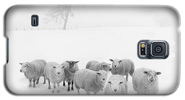 Winter Woollies Galaxy S5 Case by Janet Burdon