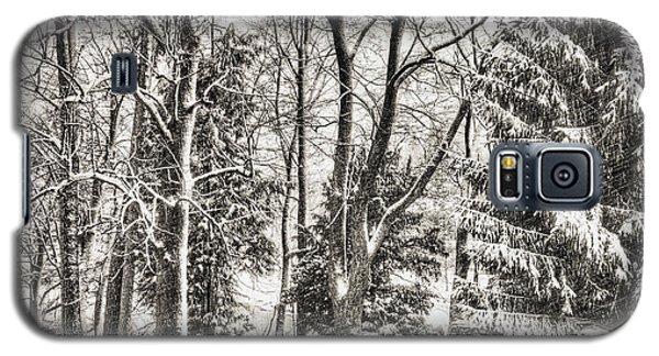 Winter Zauber 03 Galaxy S5 Case