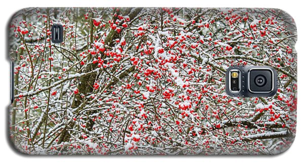Winterberry During A Snowfall Galaxy S5 Case