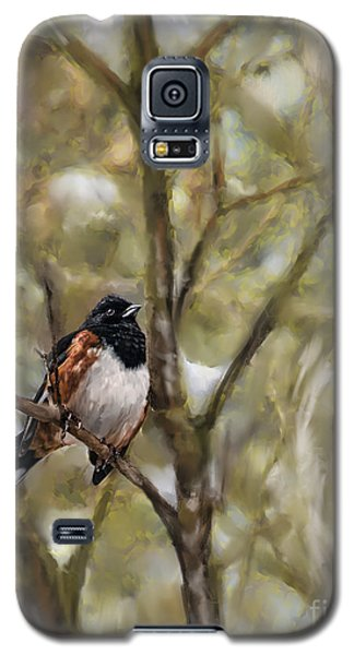 Winterbird Galaxy S5 Case