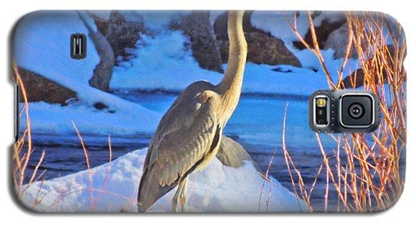 Wintering Walker River Heron Galaxy S5 Case