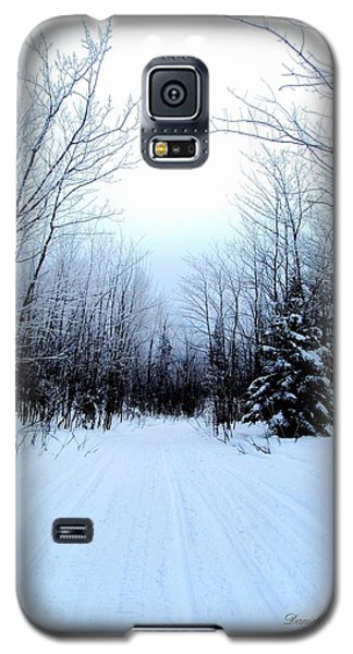 Winterlude In Abitibi Temiscamingue Quebec  Galaxy S5 Case