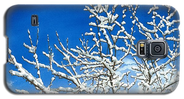Galaxy S5 Case featuring the painting Winter's Artistry by Barbara Jewell