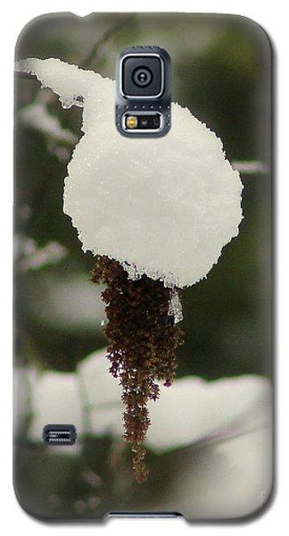 Winter's Cap Galaxy S5 Case