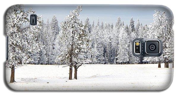 Winter's Coat Galaxy S5 Case by Dee Cresswell