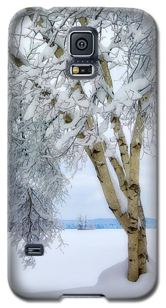 Winter's Dream Galaxy S5 Case