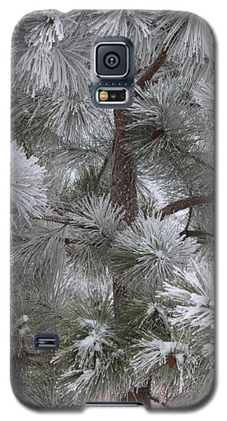 Winter's Gift Galaxy S5 Case by Penny Meyers