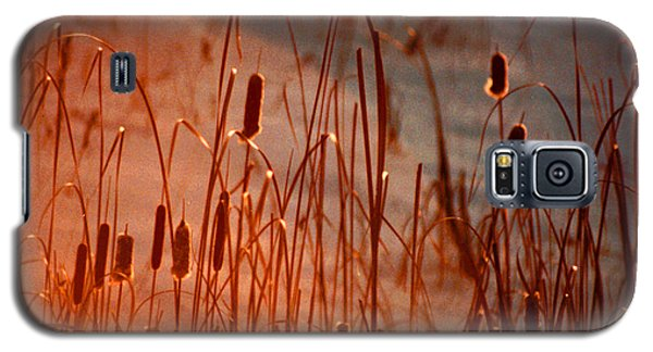 Galaxy S5 Case featuring the photograph Winter's Glow by R Thomas Brass