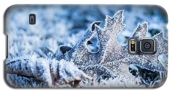Winter's Icy Grip Galaxy S5 Case