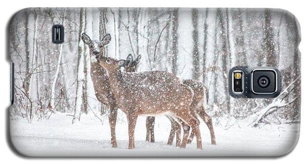 Winters Love Galaxy S5 Case by Karol Livote