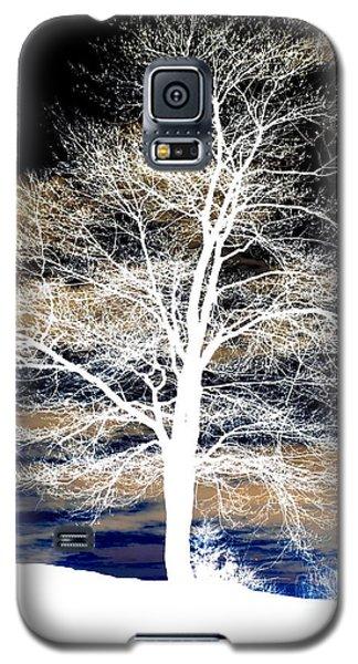 Winter's Night Sky Galaxy S5 Case